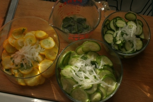 Houseproud homestead kitchen - trio of salads made from summer squash.
