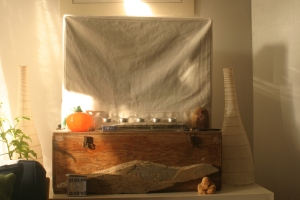 Our TV has a cozy covering it - doesn't yours?  I made ours from the remnants of an old organic cotton canvas chair slipcover that I had in my stash.  The decorations around the tv change with the seasons.  Right now it has a fall theme, but that'll change soon ...