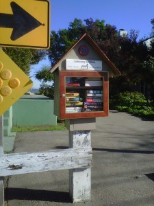 Alameda has a couple of these little free libraries.  This one's at the end of Central, right by the estuary.