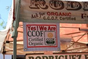 Houseproud fieldtrip farmers market organic farm IMG_1256
