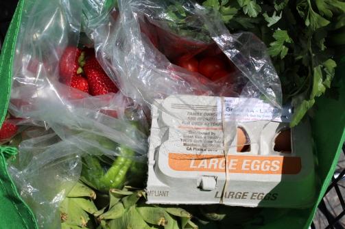 Houseproud fieldtrip farmers market purchases IMG_1266