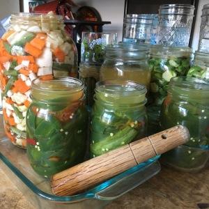 Houseproud fermented jalapenos part I IMG_2974