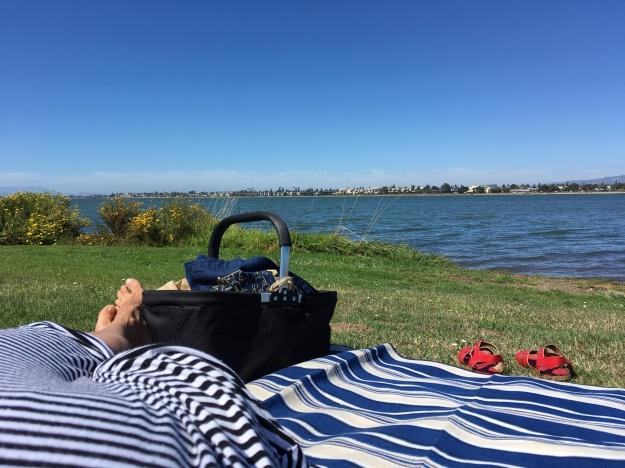 Houseproud fieldtrip picnic Bay Farm Island IMG_3071