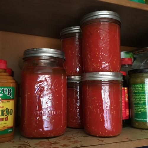 Houseproud End of Season canning tomatoes IMG_3523