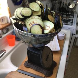 Houseproud Ferm'd Eggplant IMG_3001