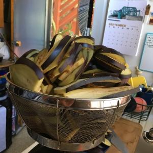 Houseproud Ferm'd Eggplant IMG_3009