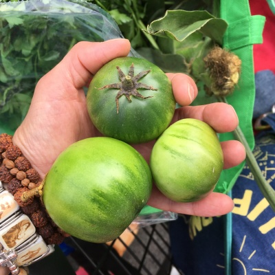 Houseproud Ferm'd Green Tomatoes IMG_3499