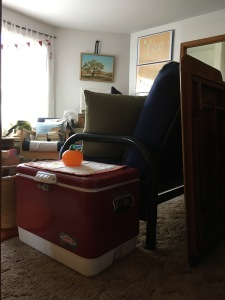 Houseproud cleaning recap IMG_4128
